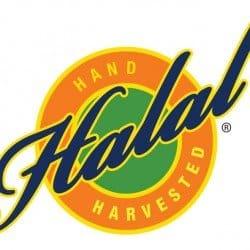 halal logo new