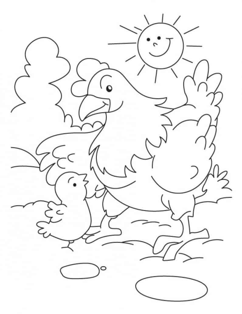 coloring page chicken - coloring sheets crescent foods premium all natural halal