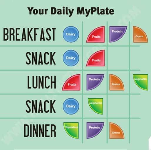 daily-plate