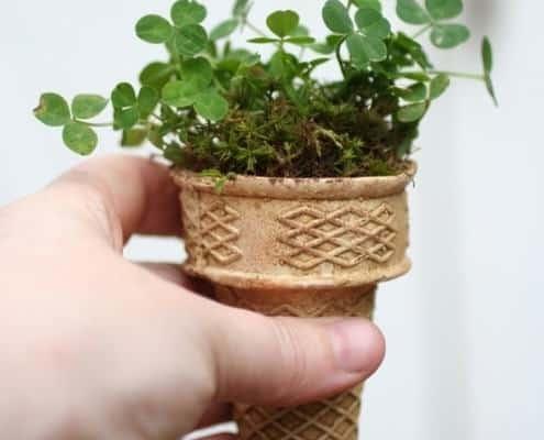 ice-cream-plant
